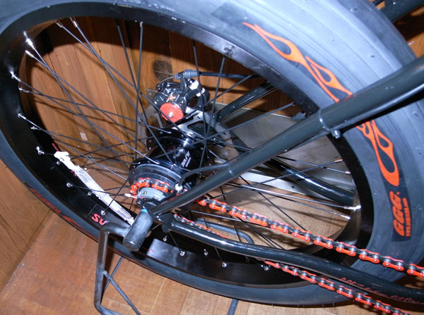 Surly 1X1=11 LIMITED EDITION+Shimano Alfine